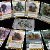 Diesel Demolition Derby cards